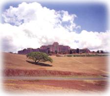 Moanalua Park